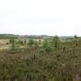 Mai 2009 : Weekend P.C.N. – Limousin – Tourbière du Longéroux – Philippe Boucher